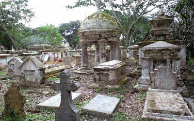 墓地...怖い